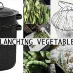 Blanching Garden Vegetables for Freezing