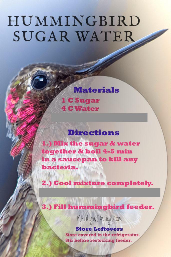 Hummingbird Sugar Water Recipe
